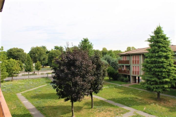 STUDIO VERDELLINO DI VERZILLO MICHELE & C SAS 13